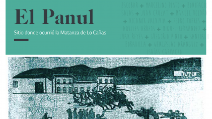 Imagen de Libro El Panul