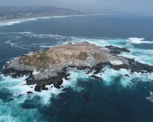 Imagen del monumento Isla de Cachagua