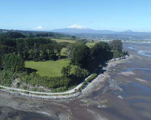 Imagen del monumento Bosque Fósil de Punta Pelluco
