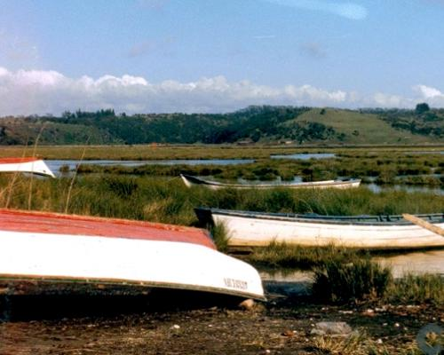 Imagen del monumento Península de Hualpén