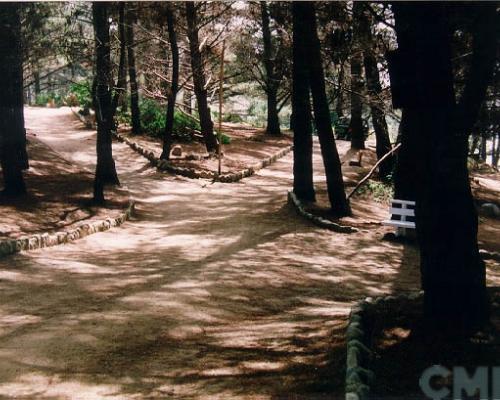 Imagen del monumento Sector Canelo - Canelillo