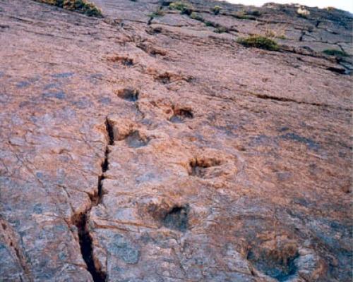 """Imagen del monumento Sitio donde se conservan huellas de animales extinguidos en el lugar denominado """"Termas del Flaco"""""""