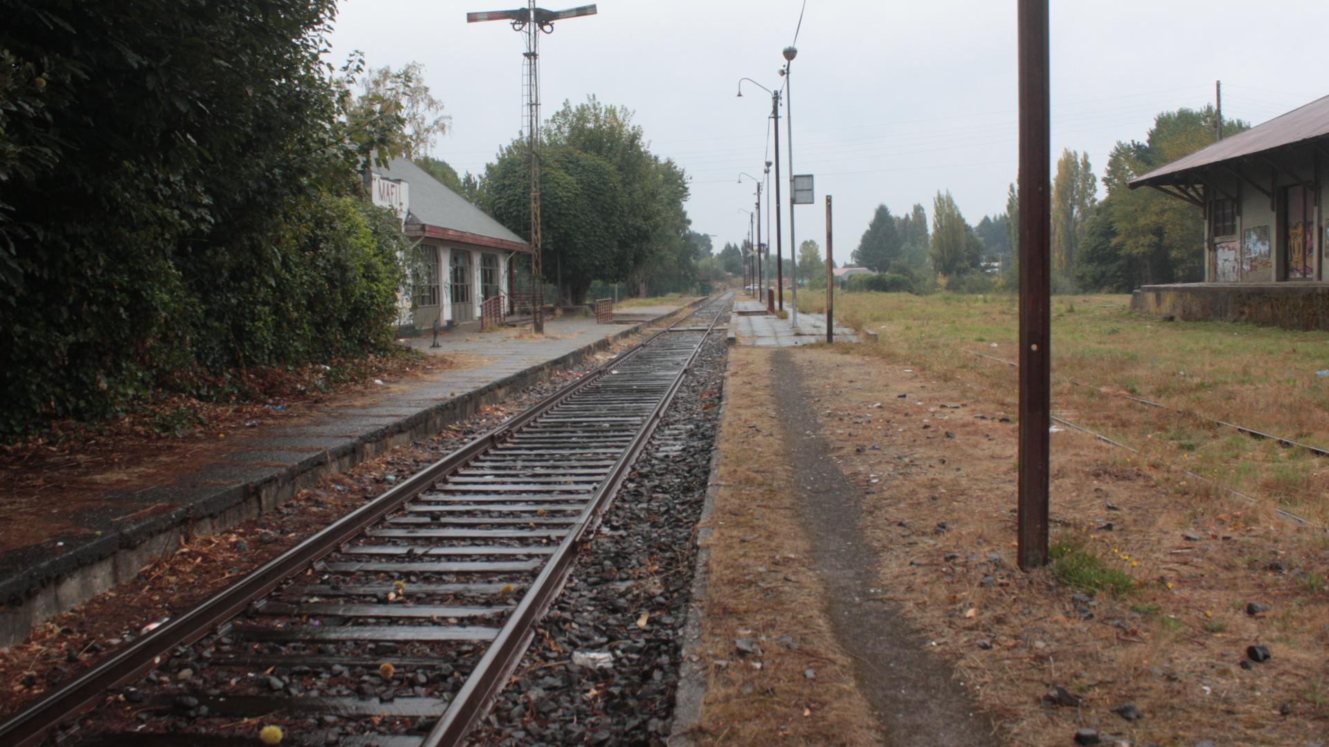 Imagen de Declaran Monumento Nacional Estación de Máfil