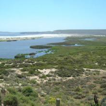 Imagen del monumento Laguna Conchalí