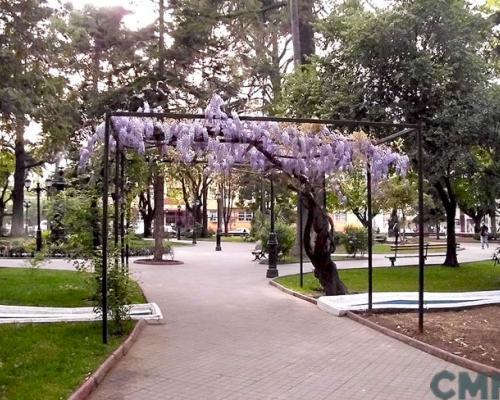 Imagen del monumento Plaza de Armas de Curicó con todos los edificios que la circundan