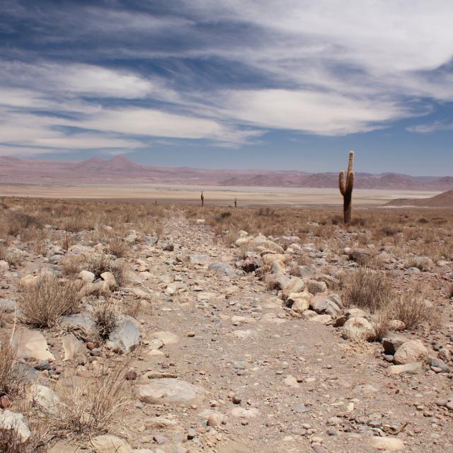 Imagen de Qhapaq Ñan-Sistema Vial Andino