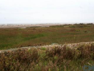 Imagen del monumento Humedal de la desembocadura del río Lluta