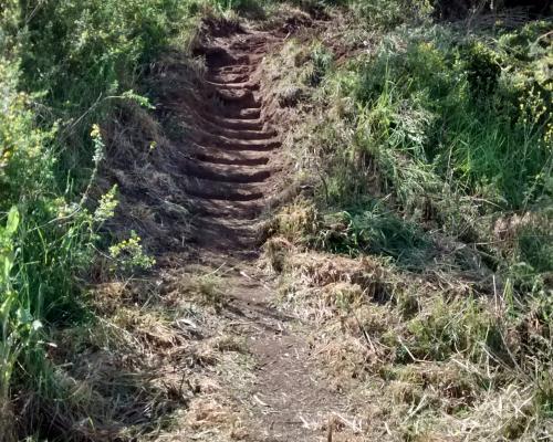 Imagen del monumento Sector del Cerro Puntilla de Los Perales