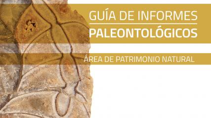 Imagen de Guía de Informes Paleontológicos