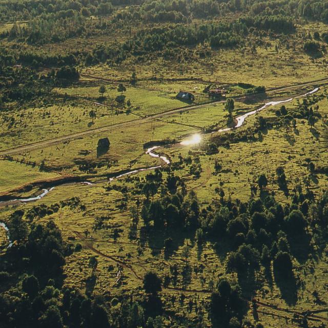Imagen de Sitio Arqueológico Monte Verde